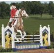 Breyer Traditional 2008: Jumper Jump, 1:9 Scale