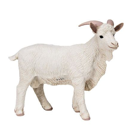 Safari Ltd Billy Goat